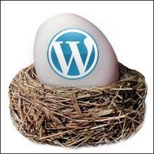 Was Wordpress Childthemes sind