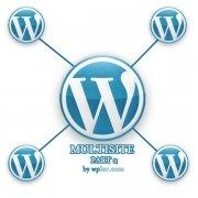 Multisite & Subblogs mit unterschiedliche Domains
